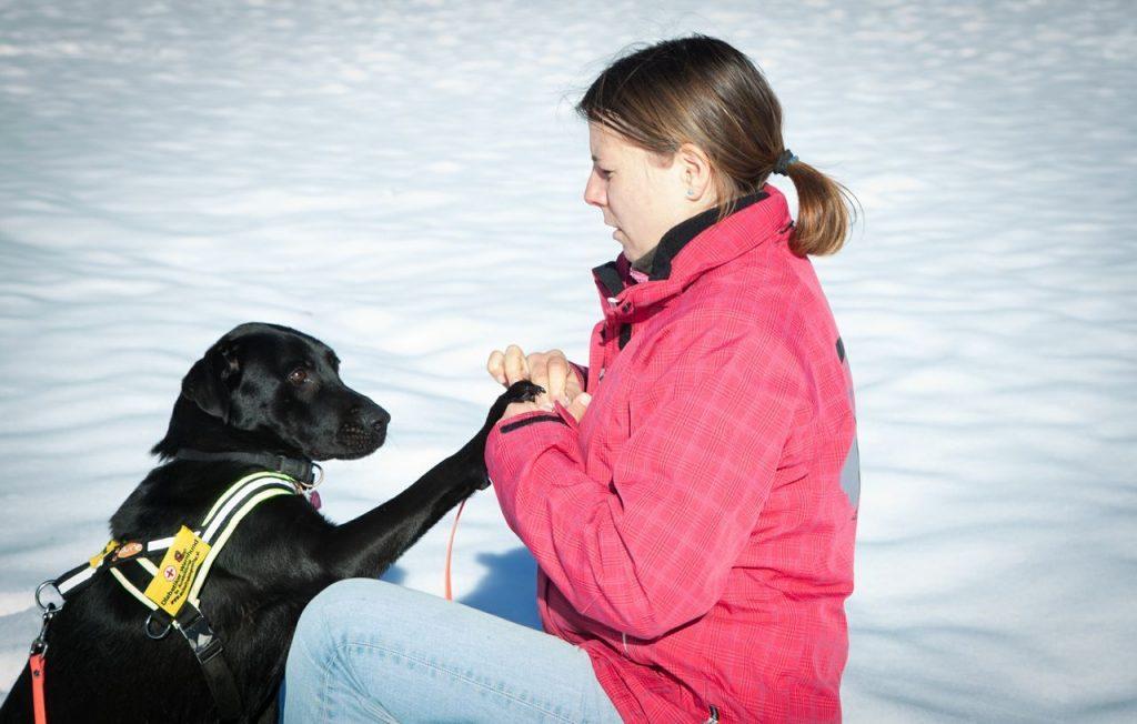 AnimalTrainingCenter Uk